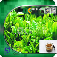 High Quality 100% Natural Tea Polyphenol Herbal Extract