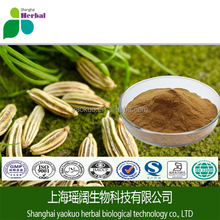 100% Natural Foeniculum Vulgare Extract/ Fennel Seed Extract Powder