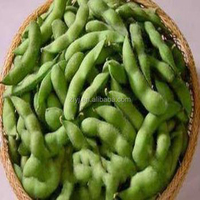 High Quality Fresh Frozen Soybean of China