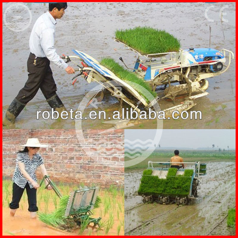 China New Design Rice Planter, Rice Transplanter, Rice Sowing Machine for Sale
