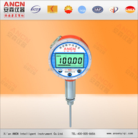 Digital Thermometer Temperature Gauge