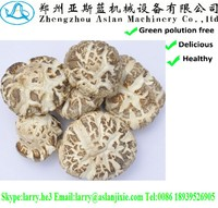 xianggu mushrooms/canned champignon/canned shiitake mushroom