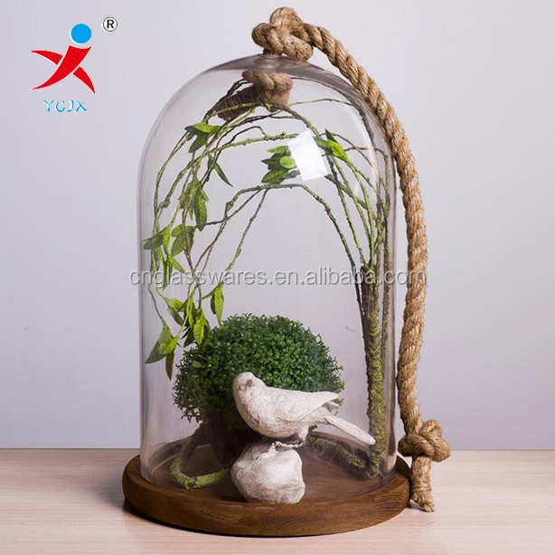 The pyrex glass dome with rough hemp rope