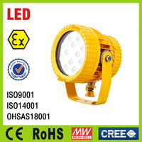 25W 40W 60W, IP66 CE, RoHS, Explosion Proof LED projector lamp, Explosion Proof LED spotlight