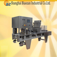 Food,Medical,Machinery & Hardware,Chemical Application and Filling Machine Type packaging machine for coffee powder