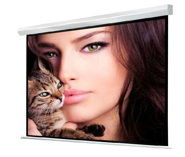 "Wuxi Wholesale 120"" electric projector screen"