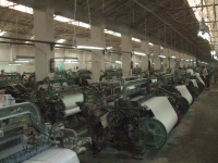 Till cotton fabric