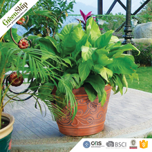New Finished Design Decorative Ceramic Garden flower Pot made by wood&stone&plastic powder