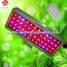 2012 led grow lamps for indoor kitchen