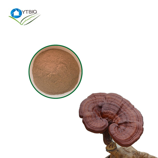 Organic Ganoderma lucidum Extract Powder/Reishi Mushroom Extract Polysaccharide &Triterpene