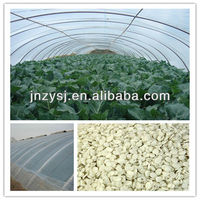 Prevent water dropping and UV prevent masterbatch for agricultural plastic tunnel film warm house film masterbatch