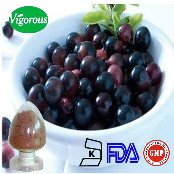 Pure acai extract/acai berry brazil extract/acai berry extract 20 1 10:1