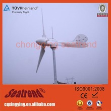 NEW Perfect New Design 12V/24V 300w Advanced Vertical type Wind Generator Motors For Sale