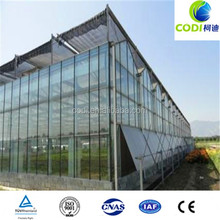 Cheap polycarbonate sheet greenhouse for tomato