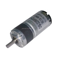 DSD-22RP250 Hot selling DC geared Motor for Jade Thermal Massage Bed and Massage Couch