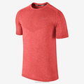 Seamless Gym Wear for Men, Running T-Shirt, Fitness Wear, Dri Fit Shirts Wholesale