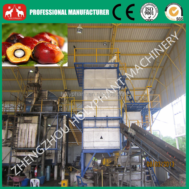 2015 New developed professional manufacturer palm fruit oil machine