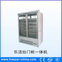 Sanye new style single-temp two glass door upright freezer for supermarket