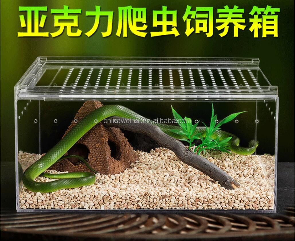 Clear Acrylic Display Box For Snake