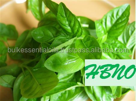 India's No.1 Natural Best Product of Basil Essential Oil