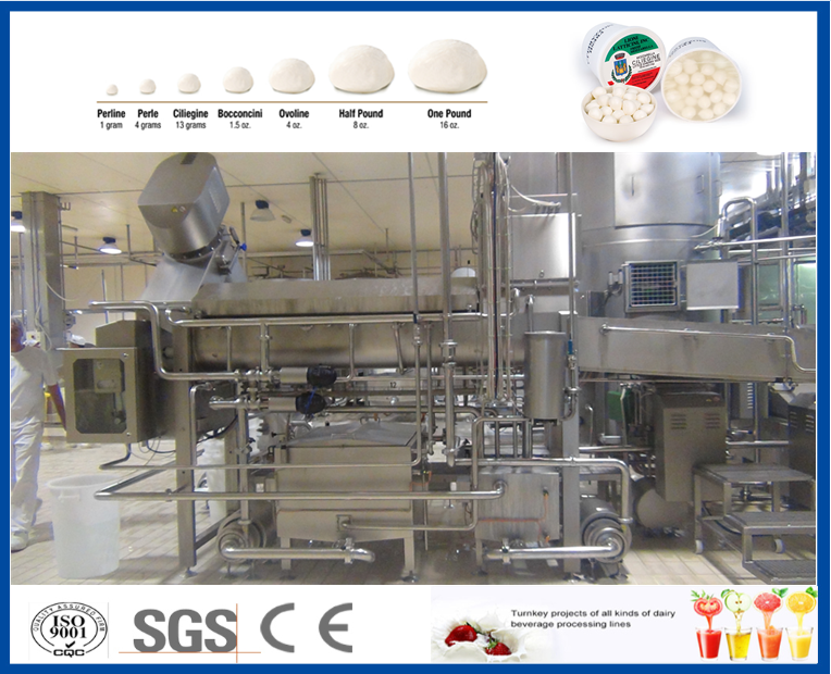 mozzarella cheese processing machinery for sale
