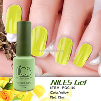 JUST ARRIVED mini NICES polish gel for nail