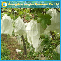 Antifreezing Agriculture Non-Woven Fabric High Quality Protective Bag Grape Rain Cover