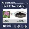 high quality 8% 20% 40% red clover extract powder