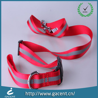 Outdoors walking dog leash training with high quality