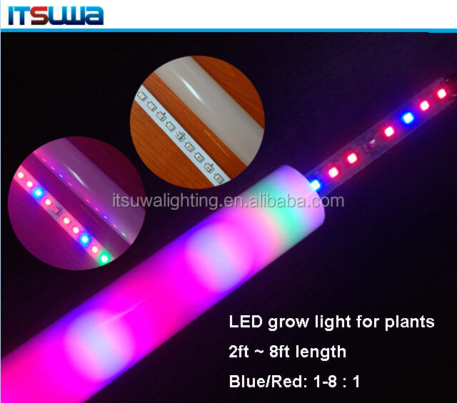 Stimulated photosynthesis t8 led mushroom grow light tube pro grow led light with best factory price