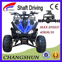 Differential Motor Adult Electric YongKang ATV With CE