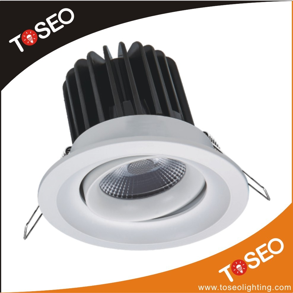 round adjustable zhongshan led lighting 10W