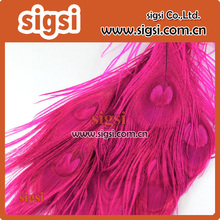 Wholesale Hot Pink Natural Peacock Tail Eye Feathers Perfect for your crafting project