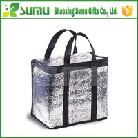Durable leakproof Disposable Insulated Ice Cooler Bag wholesale