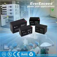 EverExceed 12v 15ah deep cycle small lead acid battery