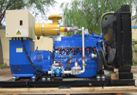 10kw-1000kw CE&ISO certificated best price syngas genset