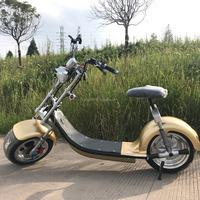 Most Popular 2 Wheel Stand up Electric Scooter