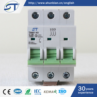 SHUNTE Yueqing China Wholesale Korea C63 6KA 10KA 3 Phase Circuit Breaker
