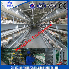 CE approved high quality cheap poultry chicken bird cage/automatic chicken layer cage