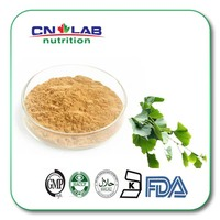 100% natural flavonoids ginkgo biloba leaves extract powder /USP grade herb extract