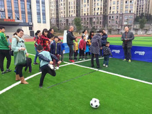 50mm football carpet for indoor /plastic grass carpet /grass for fustal