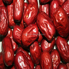 wholesale Chinese red jujube/ Ziziphus jujube/ Chinese-<strong>date</strong>