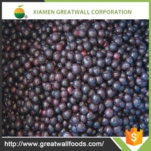 New crop frozen blueberry , Frozen berry supplier Good price