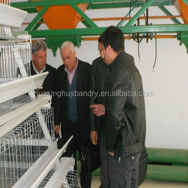 Ghana hot selling chicken laying hen cages/hen cage for poultry farm