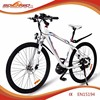 Sobowo S2-6 28 inch CE EN15194 approved Mid Motor Off Road ELectric Bike