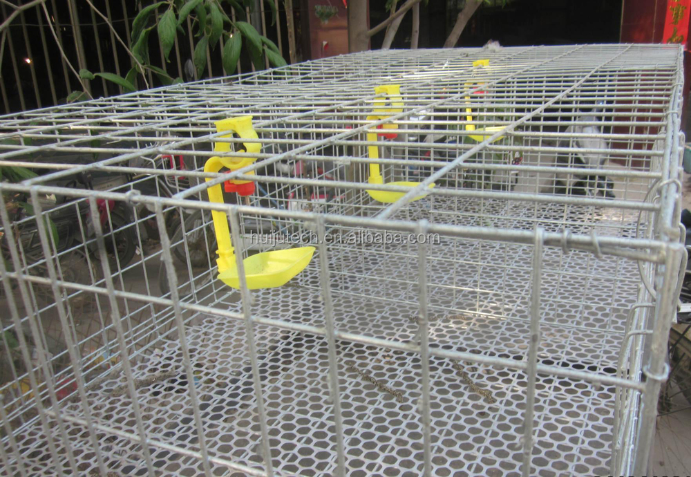 Chicken Cage For Poultry Farm For Nigeria Steel Wire Metal