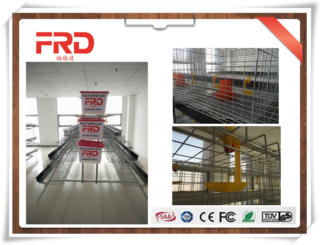 FRD Hot sale electric chicken poultry cage/sale cages for laying hens/chicken cage with automatic water system