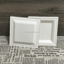 Square biodegradable sugarcane plate bagasse disposable plate