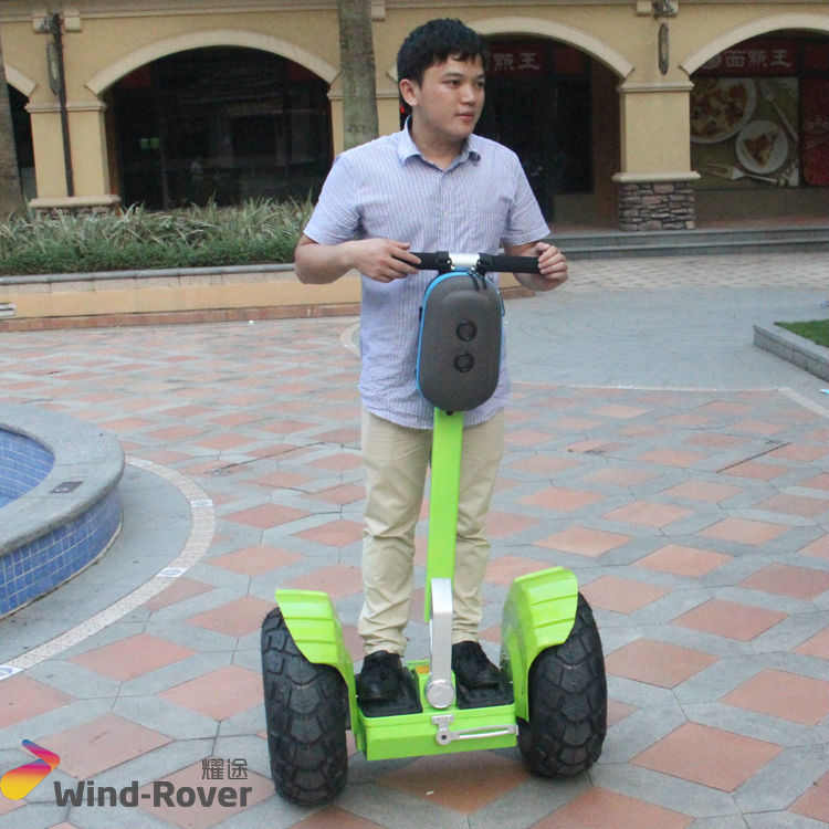 Wind Rover Electric chariot adult 2 wheel self balancing electric vehicle