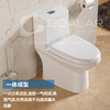 /product-detail/go-10-bathroom-sanitary-japanese-toilet-60043667077.html